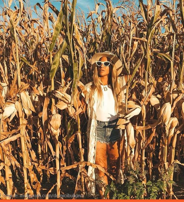 5-cibulkova-corn