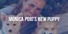 puig-new-puppy-otb