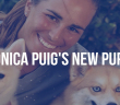 puig-new-puppy-otb