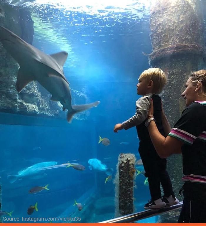 9-azarenka-leo-aquarium